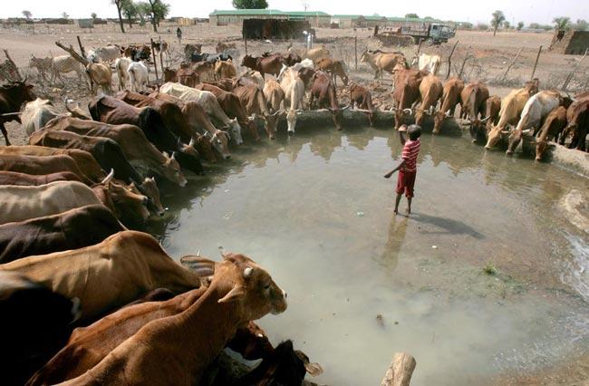 عکس های منتخب روز 15 اردیبهشت | www.Alamto.Com