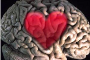 10 حقیقت جالب درباره مغز!