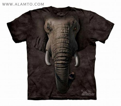 مدل تی شرت مردانه