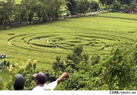 عکس از حضور آدم فضاییها در مزارع اندونزی ! | www.Alamto.Com