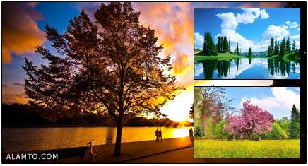 تصاویر طبیعت قشنگتر و عجیب
