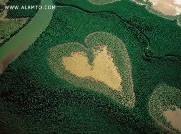 قلبای قشنگتر و طبیعی روی کره زمین ! عکس