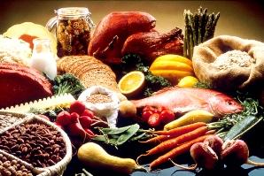 كنكوریها گوشت قرمز و سبزی بخورند