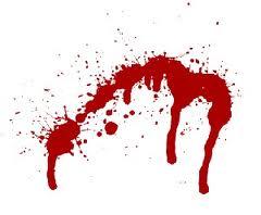 زن قاتل مارمولک به خورد شوهرش داد!