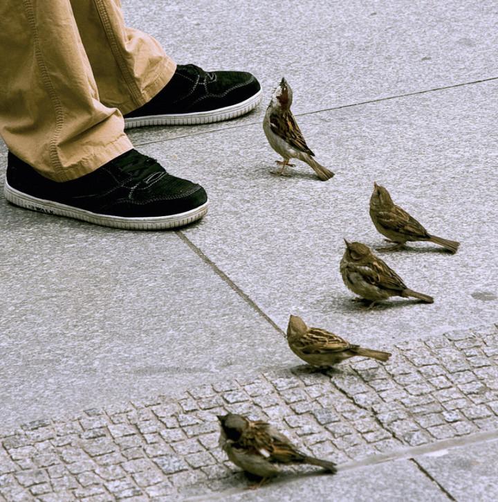 عکس های جالب و خنده دار تیر ماه ۹۰ | www.Alamto.Com