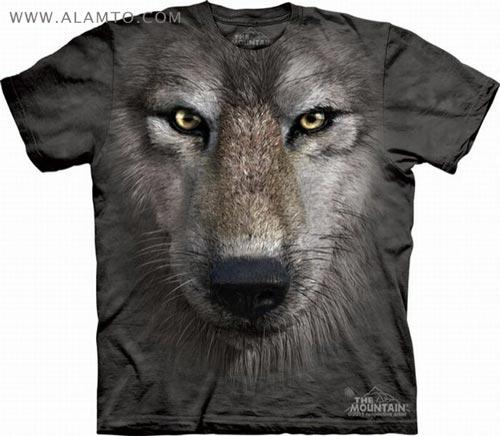 مدل جدید تی شرت پسرانه