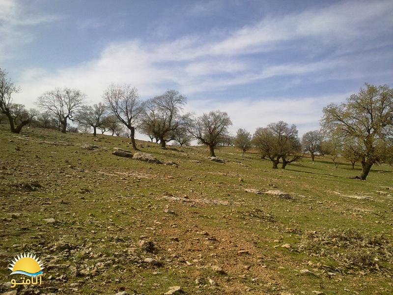 عکسای قشنگتر از طبیعت استان ایلام - Www.Alamto.Com