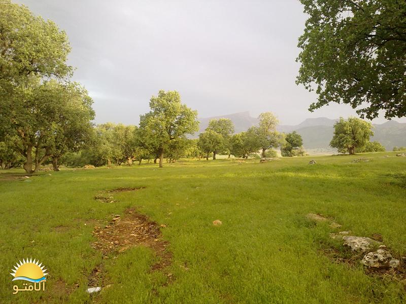 عکس های زیبا از طبیعت استان ایلام - Www.Alamto.Com