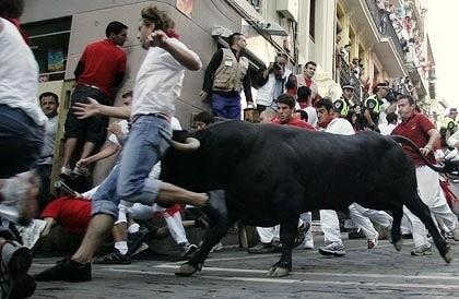 عکس های جالب و دیدنی از مسابقات گاو بازی در اسپانیا